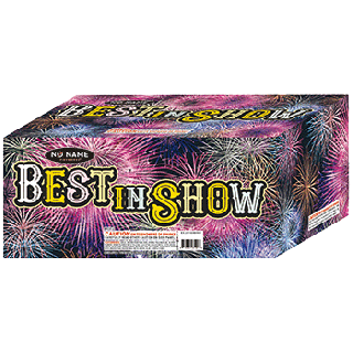 Best In Show Fountain | 500 Gram Fountain By No Name Fireworks